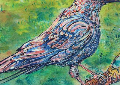Jane's Bird